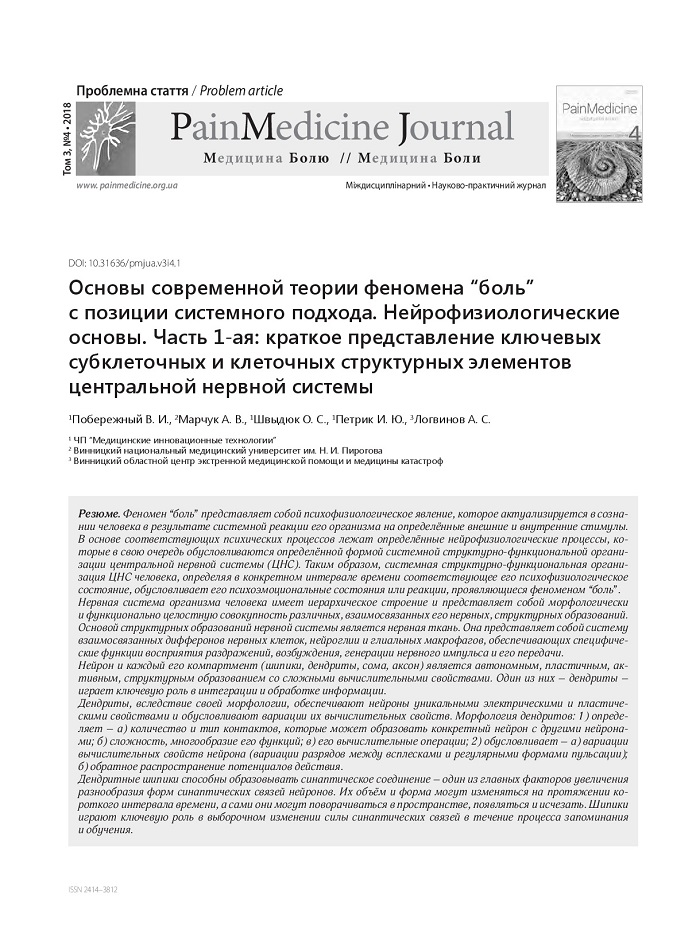 """Основы современной теории феномена """"боль"""" с позиции системного подхода. Нейрофизиологические основы. Часть 1-ая: краткое представление ключевых субклеточных и клеточных структурных элементов центральной нервной системы"""