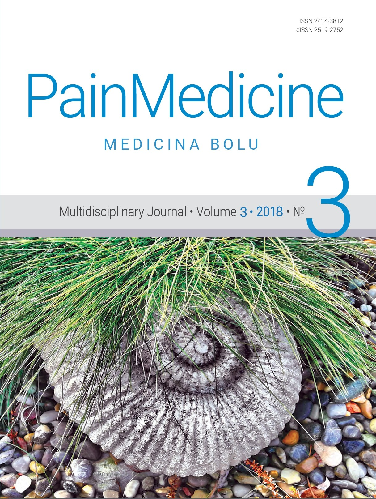 View Vol. 3 No. 3 (2018): Pain medicine